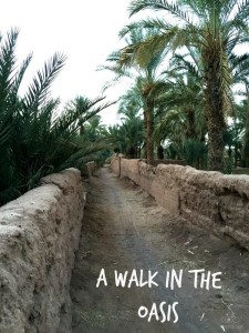 Walk in the Oasis