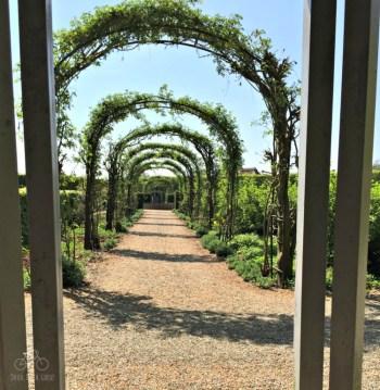 Garden Arches at Egeskov