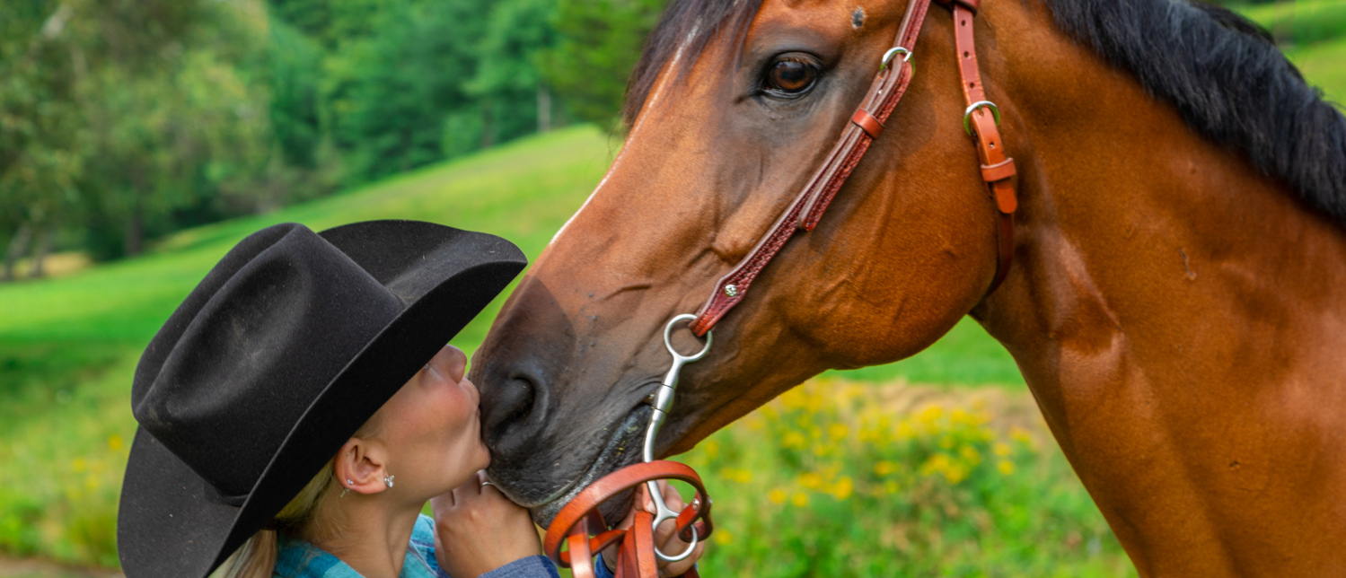 Fabtron Saddlery bridle with bay horse and cowgirl