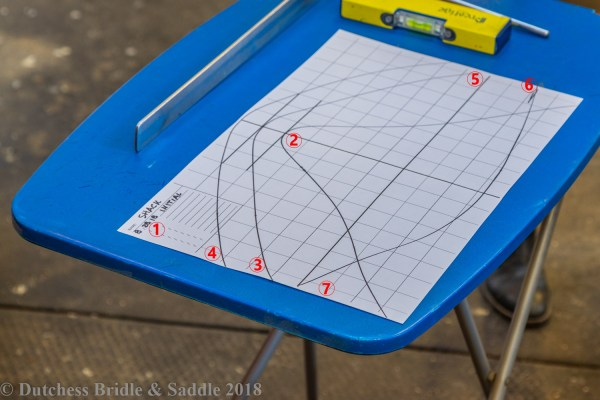 How to take a wither tracing like a saddle fitter