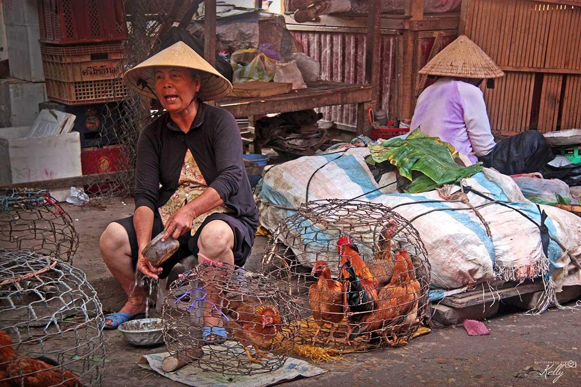 Reisroute Vietnam