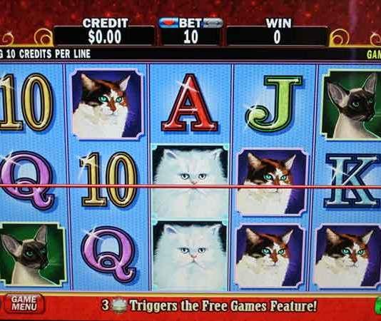 Vrouwen gokken beter dan mannen