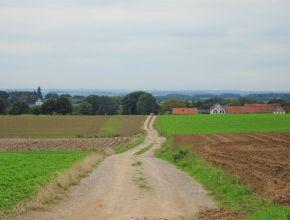 Uitzicht over Midden-Limburg
