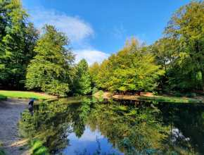 herfst op de oudste wandelroute van Nederland