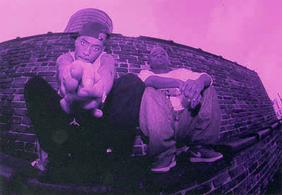 mobb deep purple vision