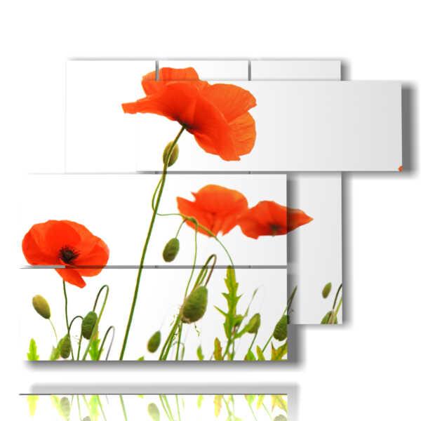 Leinwandbild Kunstdruck Rote Mohnblumen In Grau Vidaxl De