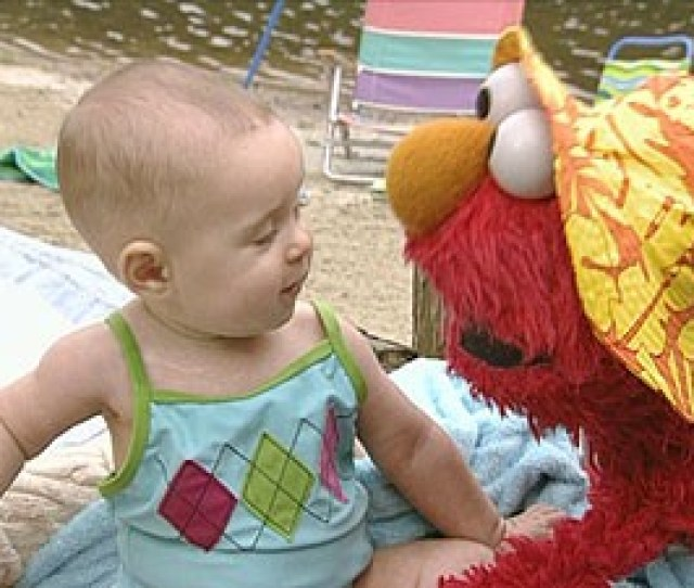 Sesame Street Elmo S World Summer Vacation Dvd Talk Review Of