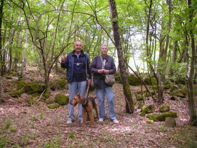 Tiskan vodič arheoloških nalaza Istre