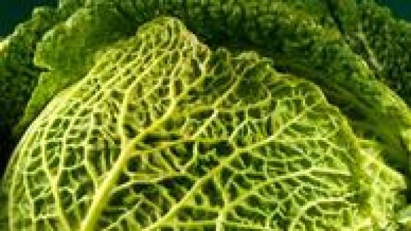 Някои зеленчуци са по-здравословни, когато са сварени