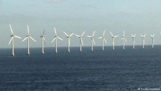 Wind turbines out at sea (Sandra Hausman)