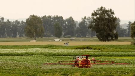 Η θνησιμότητα των πουλιών συνδέεται σημαντικά με τη χρήση ζιζανιοκτόνων και εντομοκτόνων