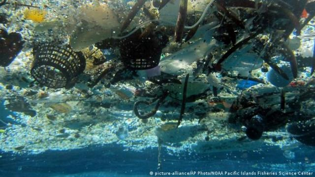 Hawaii Plastikmüll in den Ozeanen (picture-alliance/AP Photo/NOAA Pacific Islands Fisheries Science Center)