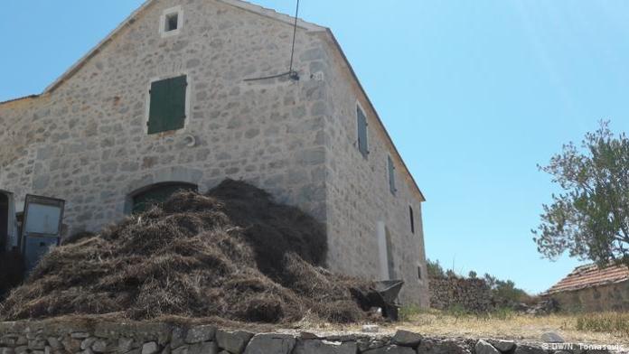 Kroatien Insel Hvar Lavendeldestilerie in Ort Velo Grablje (DW/N. Tomasovic)