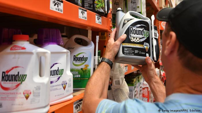 A man with a short-sleeved light blue shirt and black cap looks at a round-up plastic canister.  The chemical crop protection product is sold by the Bayer subsidiary Monsanto.  It contains the controversial glyphosate.