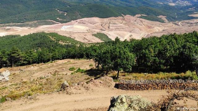 Kaz Dağları'nda altın madeni projesi için on binlerce ağaç kesildi