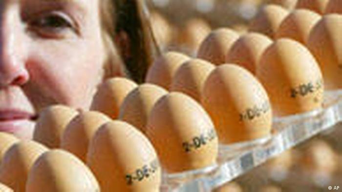 Huevos de suelo