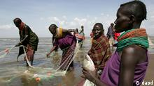 Turkana women catching fish ((ddp images/AP Photo/Karel Prinsloo)</p><br /> <p>