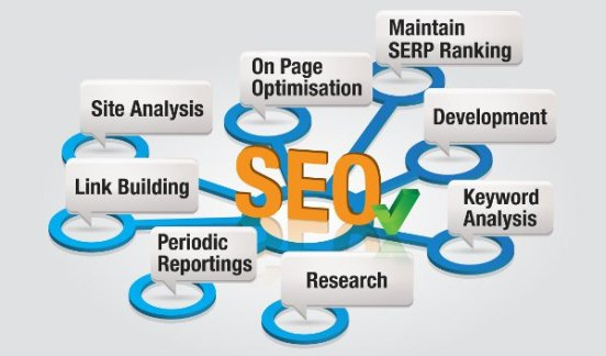 seo search engine optimization services in delhi