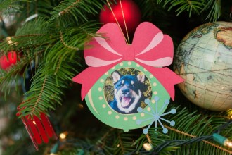 pet ornament
