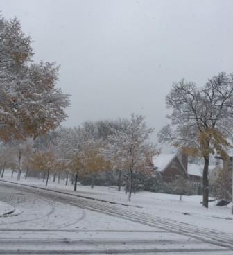 A Winter's Walk