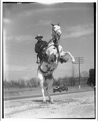 Maryland Mounted Police horse rears up Horydczak, Theodor, ca. 1890-1971. Theodor Horydczak Collection (Library of Congress)