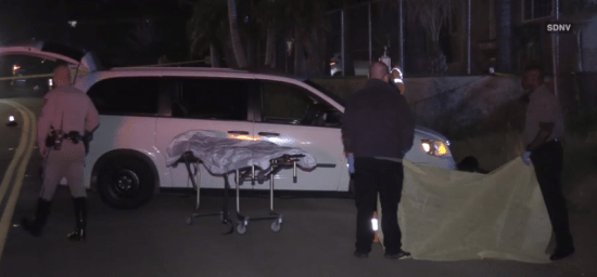 California: David Palafox killed a pedestrian and fled