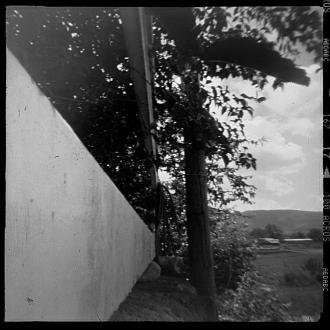 pinolga-08