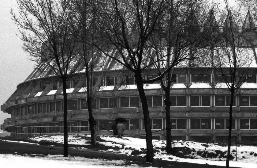 F_HIGUERAS_Corona-de-espinas_Ciudad-Universitaria_Madrid-1965-85_3