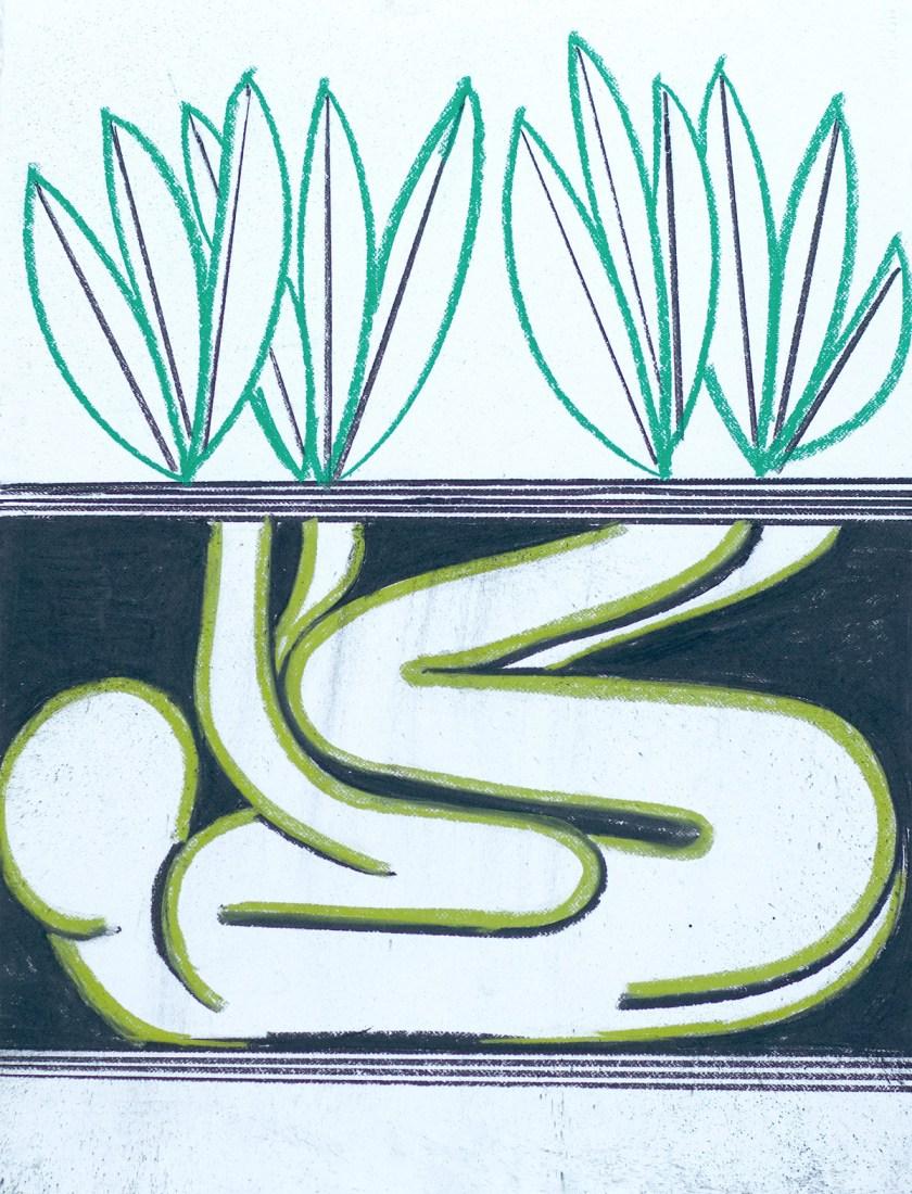 """Vista de la muestra """"Un encuentro vegetal"""" © La Casa Encendida"""