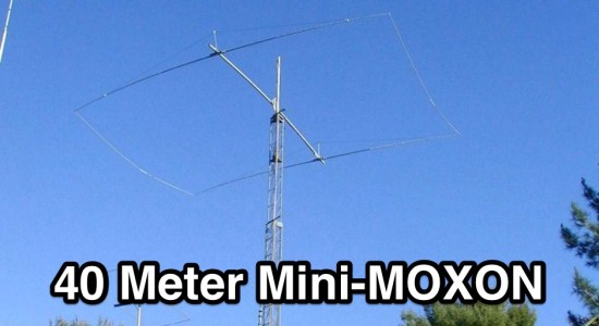 40 Meter Moxon