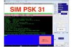 SIM PSK 31