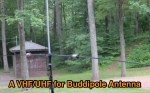 A VHF/UHF Addition For The Buddipole Antenna