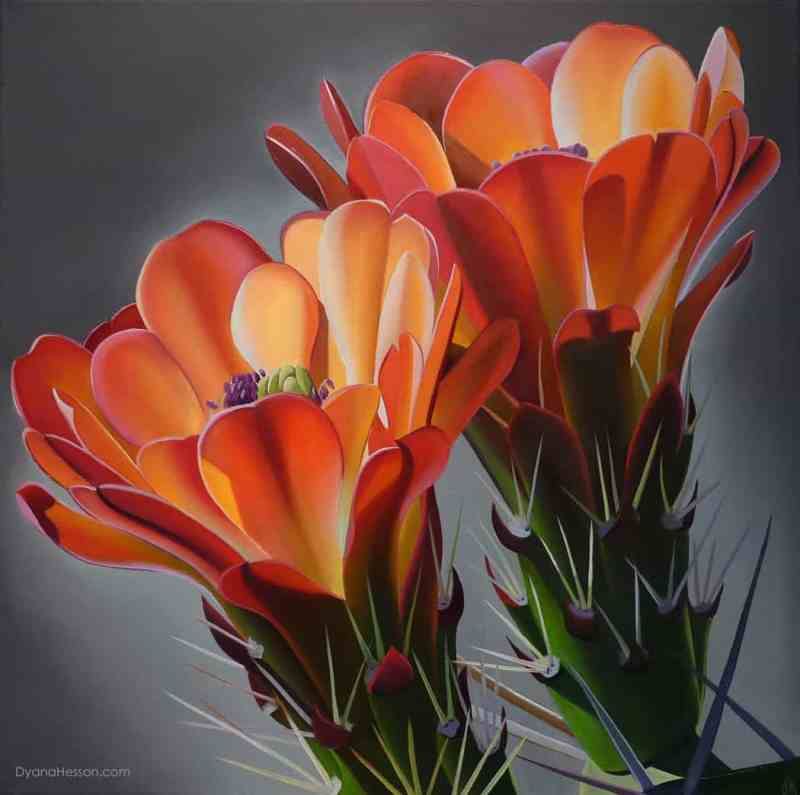 Dyana Hesson, Cheers, Claret Cup Cactus Blooms