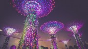 How a Singapore Work Visa Might Affect Your Family Members