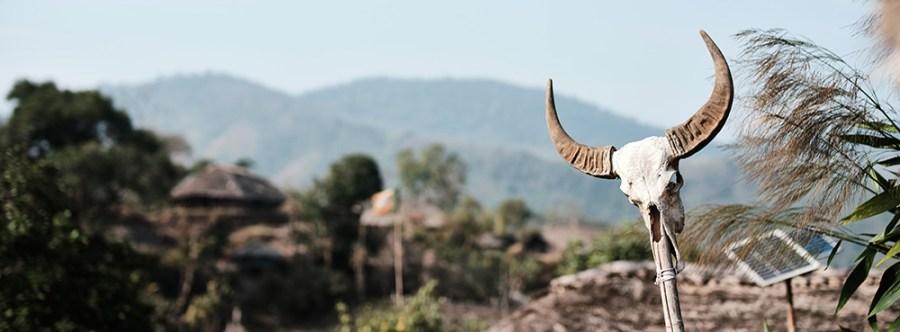 A mithun skill in a Wancho village