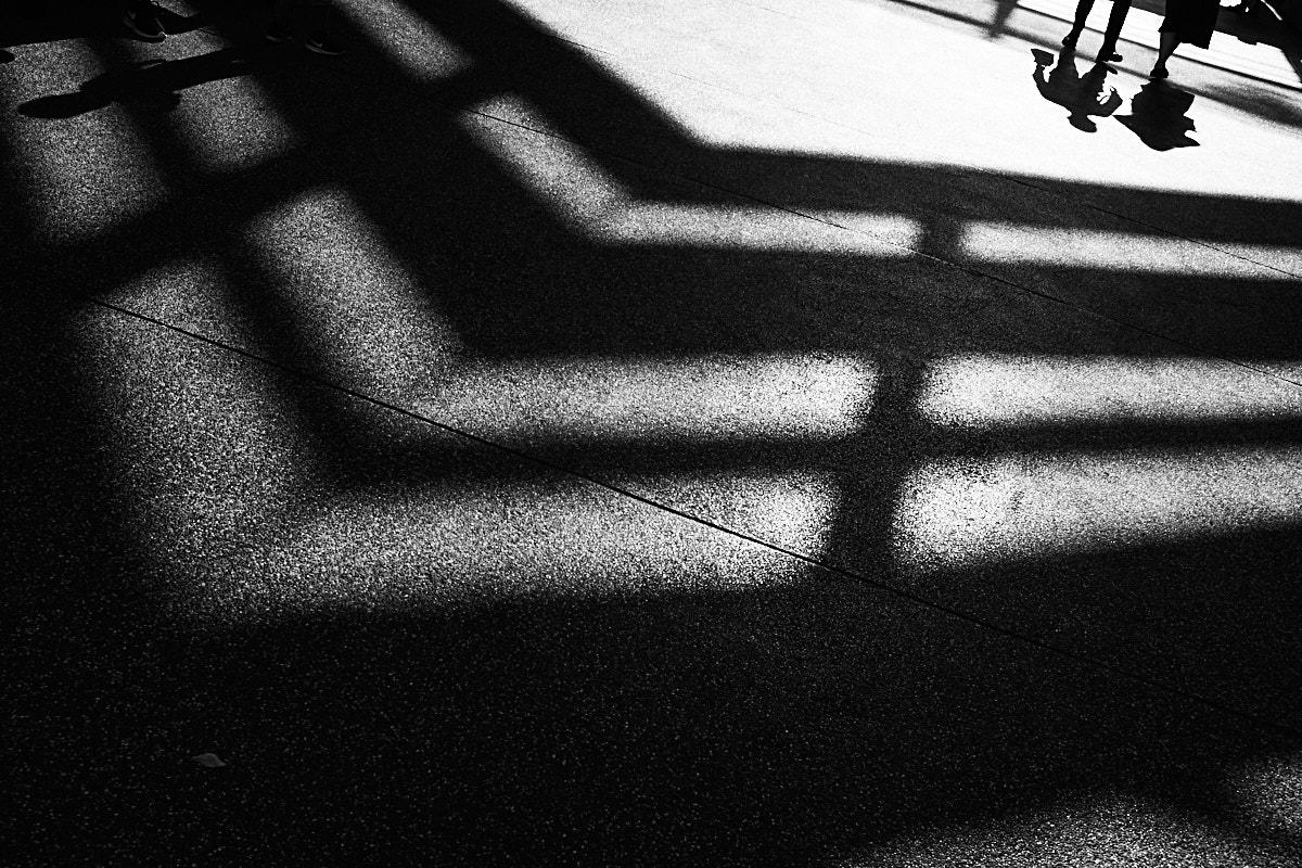 Taipei Shadows