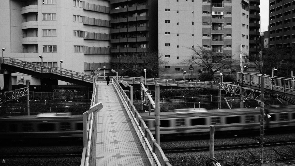 Overpass - Tokyo Trains