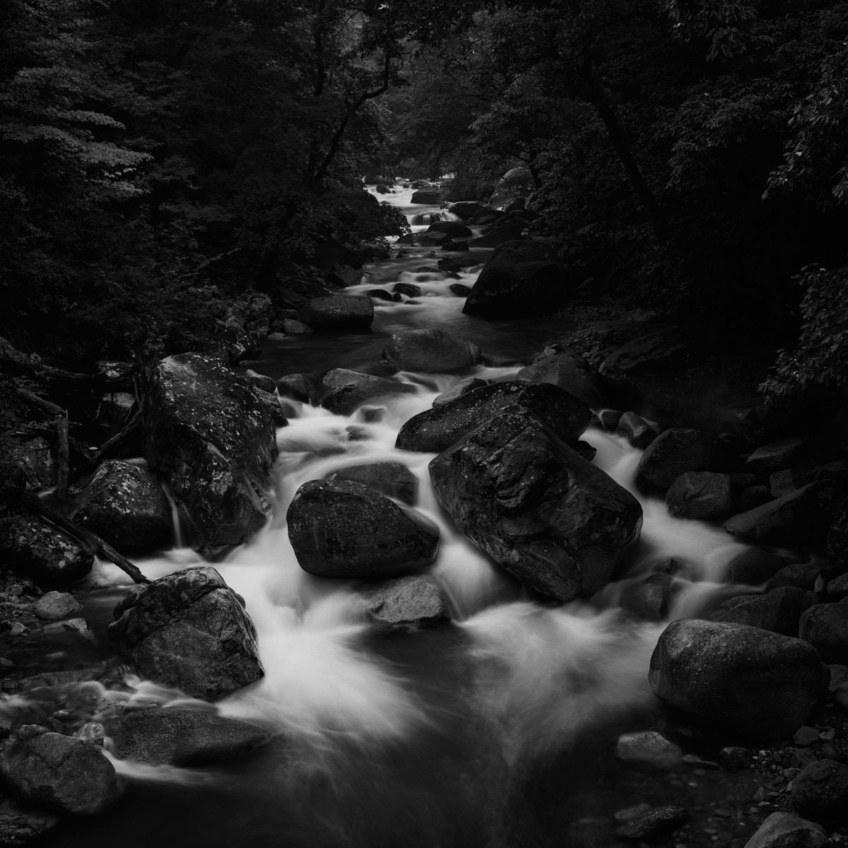 Stream Long Exposure - Gayasan National Park