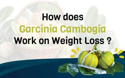 How does Garcinia Cambogia Work on Weight Loss?
