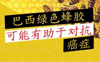 巴西绿色蜂胶可能有助于对抗癌症