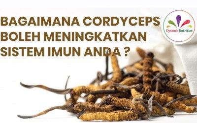 Bagaimana Cordyceps boleh Meningkatkan Sistem Imun Anda?