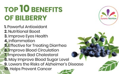 Top Ten Benefits of Bilberry