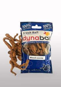 Blood worms are fishing bait for whitings