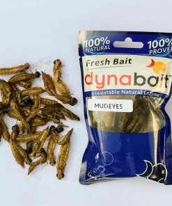 Freshwater fishing Australia bait for trout