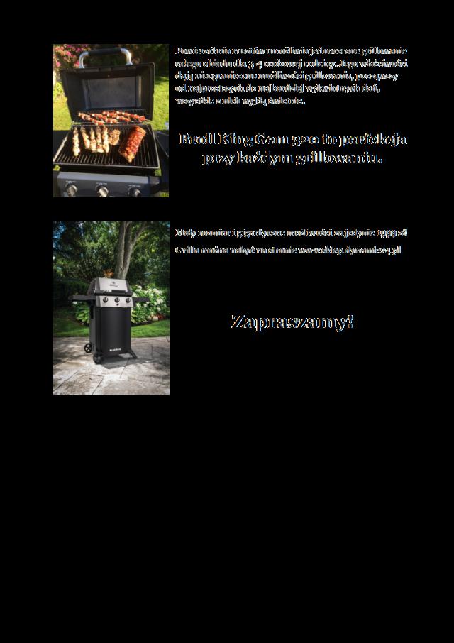 Grillowanie_Gem_320_Dynamic24