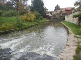 Dans le cadre de l'étude de modélisation hydraulique de la Chalaronne, photo de la Chalaronne, au droit de Chatillon-sur-Chalaronne