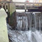 Dans le cadre de la maîtrise d'œuvre de la continuité écologique des rivières Gizia et Sonnette, photo du seuil d'un ancien moulin
