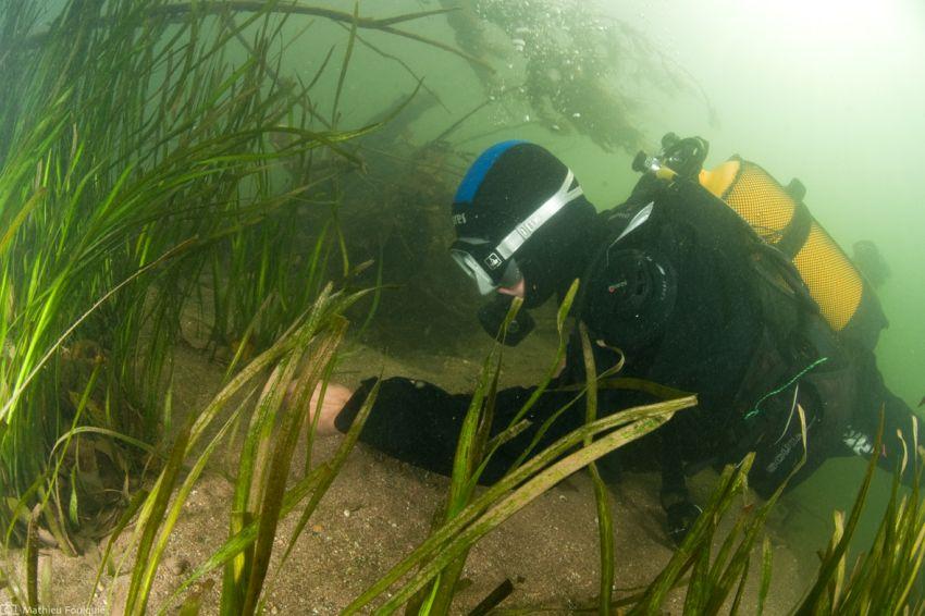 #6 – Granulo sous l'eau !