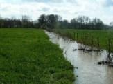 Vue sur le petit canal reliant la Reyssouze au Reyssouzet dans le cadre du projet de continuité écologique