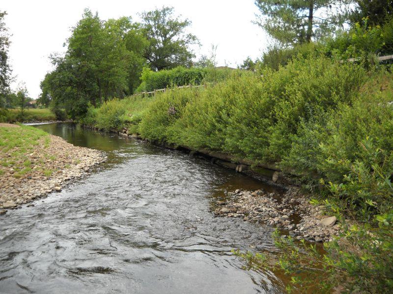 Avant-projet : Vue sur la rivière Sornin